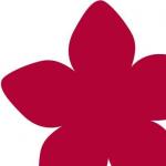 Zimtblüte Logo